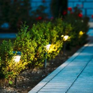 Pathway Exterior Night Lighting