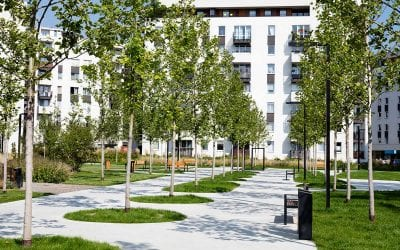 Avoid These Landscaping Mistakes in Your Commercial Project