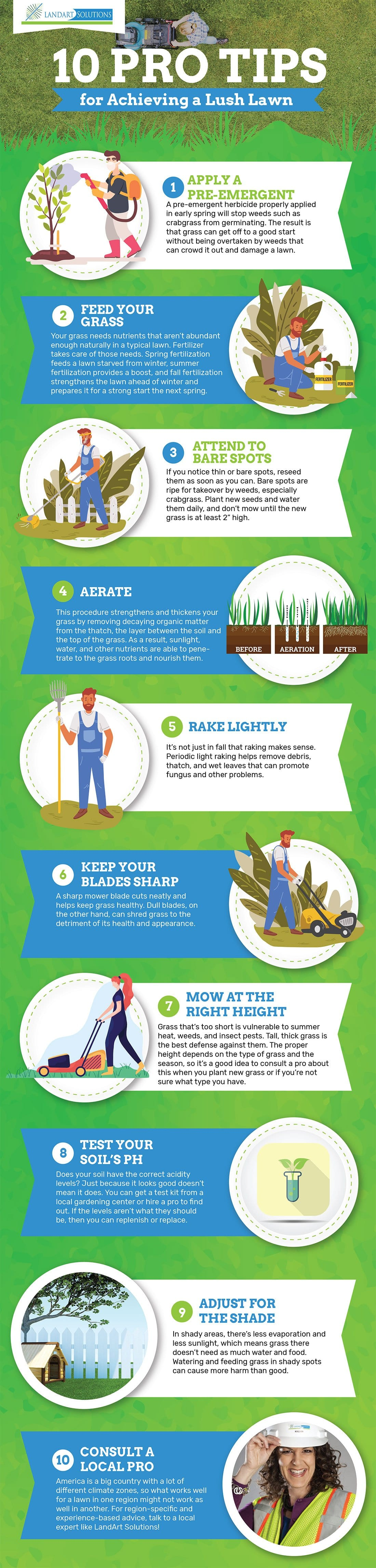 10 Tips for Achieving a Lush Lawn