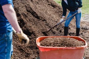 composting for sustainable landscaping